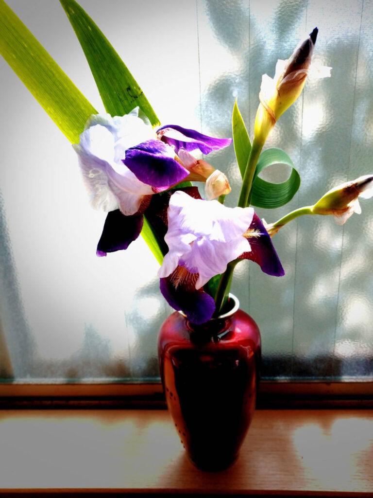 生徒様からお花をいただきました。